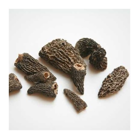 Dried Morel Mushrooms  - finest grade